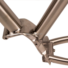 "29"" titanium pinion gear box bike frame"