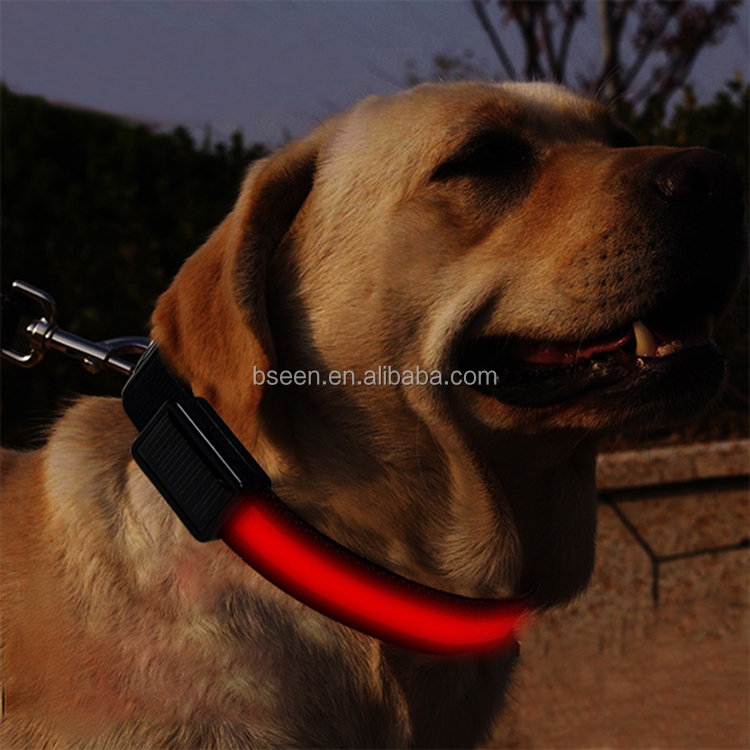 2017 High Visible Dog Collars Beautiful Design Pet Prodcut Lighting Colorful LED Bracelet Dog Collar