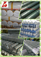 competitive price white blue plastic sheet pe tarpaulin rolls