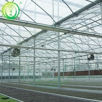 Cheap price glass cover agricultural greenhouse for tomatoes