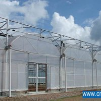 Low Cost Multi Span Agriculture Greenhouse