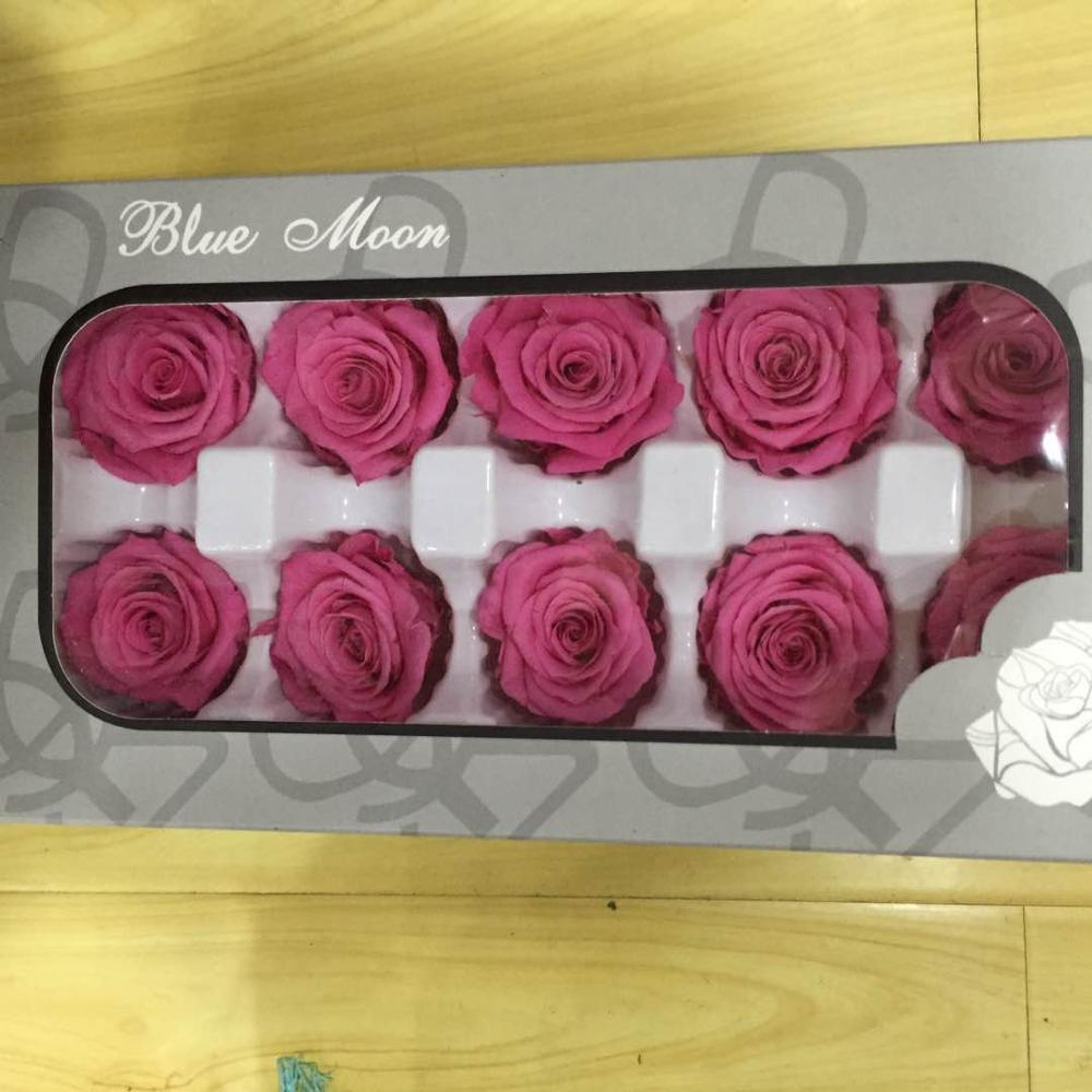Wholesale preserved rose flower freeze dried roses with 4-5cm rose head