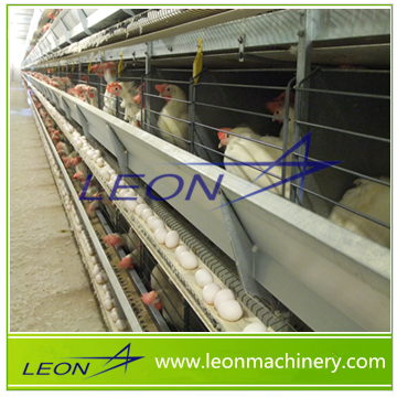 Leon series chicken cage feeding system for chicken poultry farm