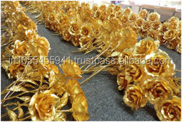 Gold Plated Roses - 11