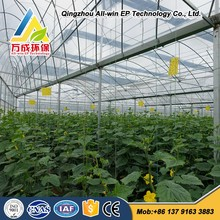 Advanced multi span film greenhouse for vegetable
