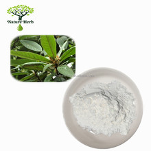 High Quality Powder 10:1 Loquat Leaf P.E.