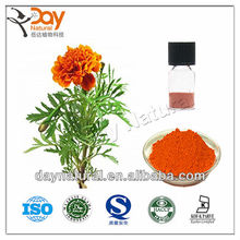 buy marigold manufacturer