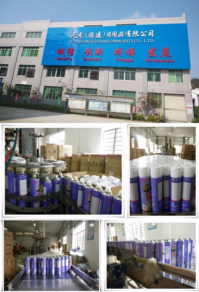 China Chemical Areosol Spray High Quality Pest Control INSECTICIDE