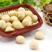 Raw Macadamia nuts with shell and Without shell.