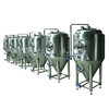 Runyin China factory grade beer brewing tank stainless steel fermenter