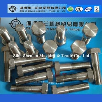 High quality AISI stainless steel hex bolt and nut