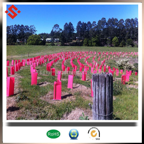 seeding tree plant protect tree guards