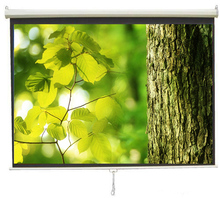 Double sided black rear projection screen