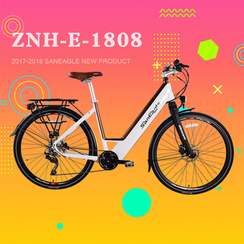 2017 saneagle 36V x 250W brushless Mid motor Central motor e-bike