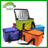 Stock 420D Polyester Camping Collapsible Bulk Cooler Bag