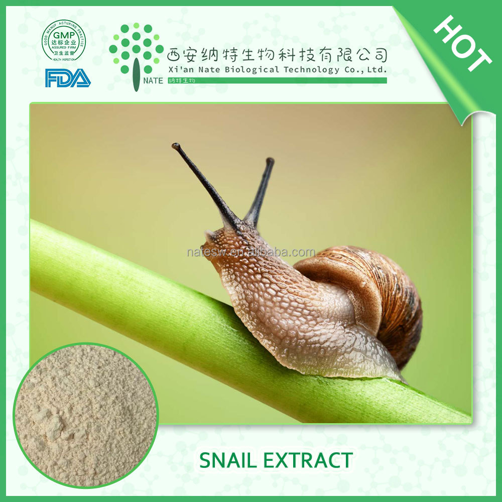 Best selling Helix Aspersa Snail Extract Protein 65% Snail slime extract