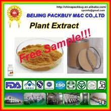 Top Qualit From 10 Years experience manufacture oolong tea extract