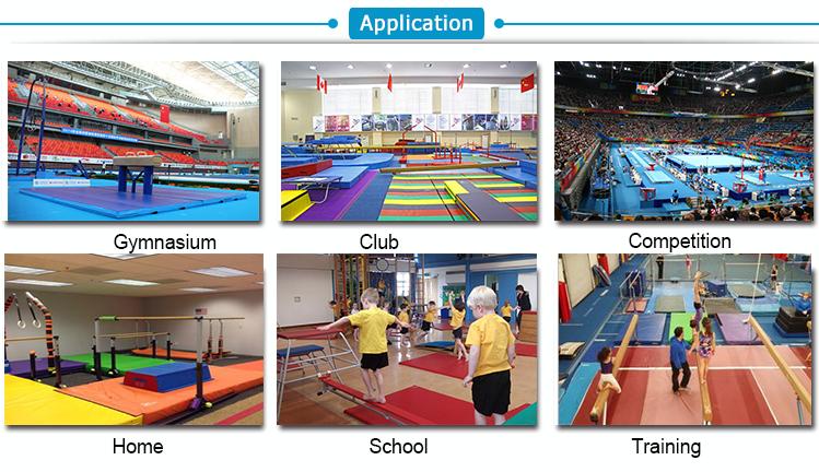 gymnastics application.png