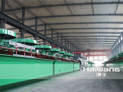 High Performance Lead Ore Processing Flotation Cell Design Equipment