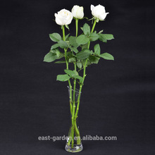 Customized professional dextrose mint in various shape and size fresh cut garden roses with best quality low price