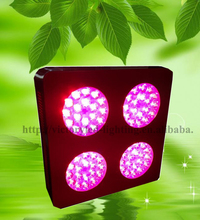 Greenhouse lighting apollo double sided led grow light