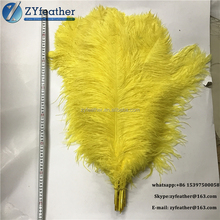 Factory direct prices 70-75cm long 30-40cm wide big yellow ostrich feather