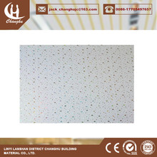 blue sky pvc ceiling panel polycarbonate plastic ceiling panels with great price