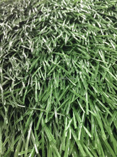 Football Sport Field Economic PE Material Artificial Turf Grass Good Prices