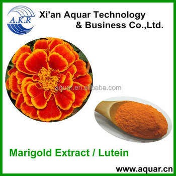 Chinese herbal extract marigold P.E. lutein 80% HPLC
