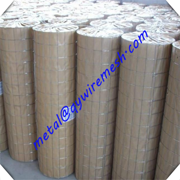 1/2 inch galvanized welded wire mesh price / welded wire mesh factory