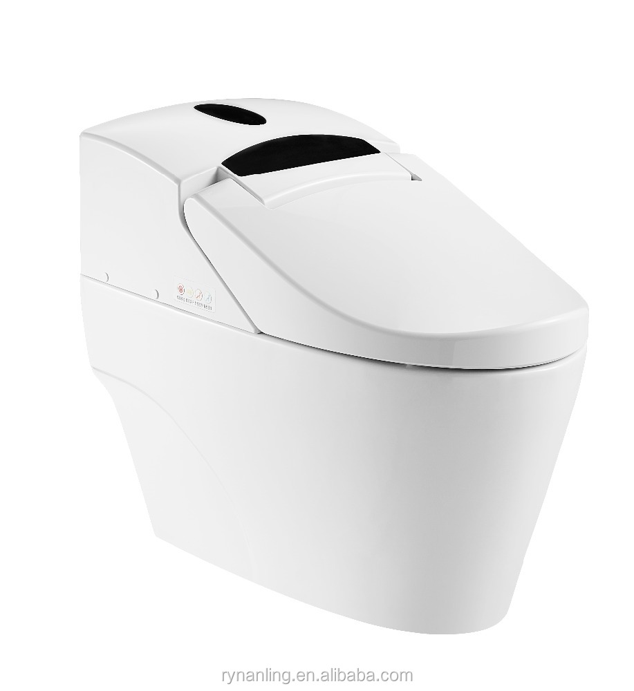 Toto Sanitary Ware Hot And Cold Water Cleaning Smart Toilet Zjs-02 ...