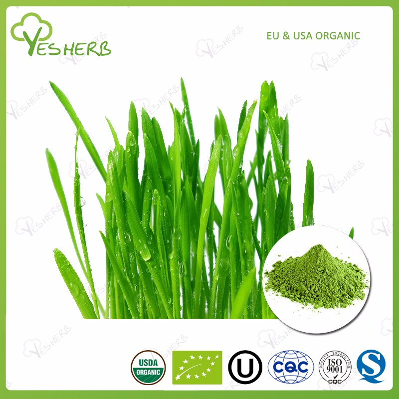 wheat grass powder.jpg