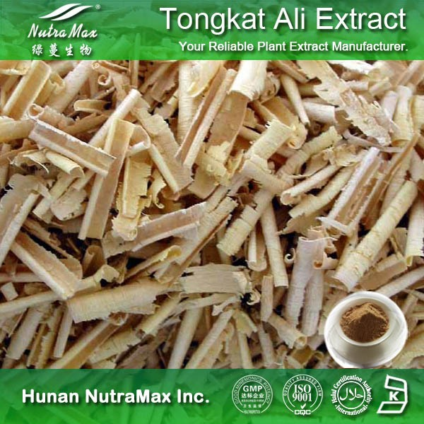 Plant Extract Sex Health Powder Tongkat Ali Root Extract 200:1