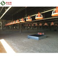 Automatic poultry shed equipment/chicken farm equipment / complete farming system