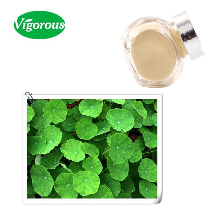 100% pure natural Gotu Kola Extract/Gotu Kola Extract powder/centella asiatica herb powder