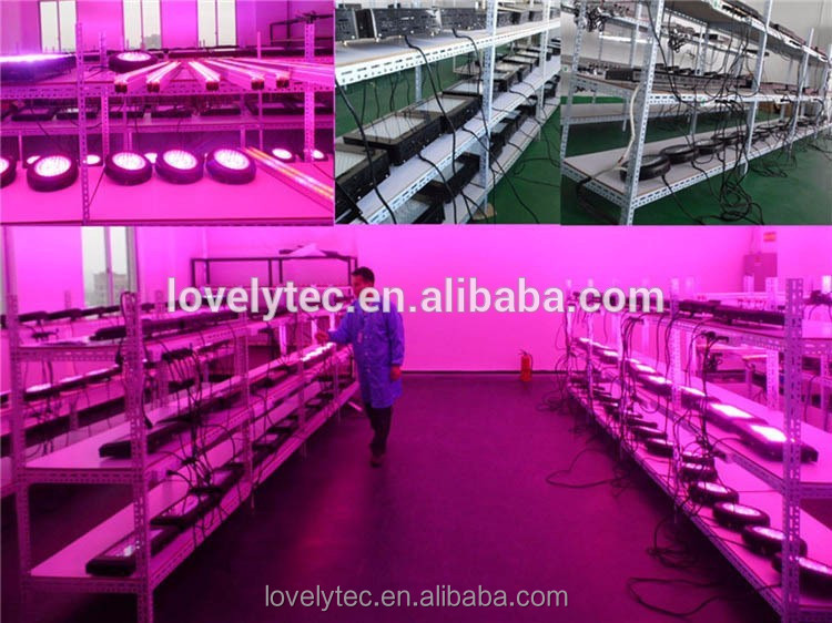 Professional best led grow light 2012 with low price