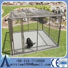 3mx3mx1.8m large hot dipped galvanized chain link dog kennel