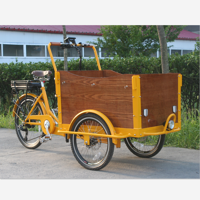 lifan cargo bike tricycle for sale
