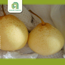 china fresh pear sweet ya pear for sale