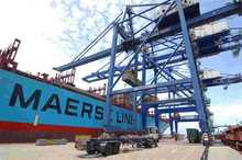 experienced FCL/LCL sea freight feefer container ship ms way
