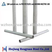Seamless Stainless Steel Pipe/Tube