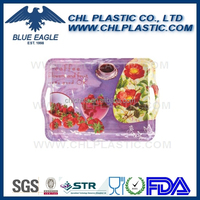 High quality plastic rectangular tray with handle
