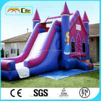 CILE Purple Classical Inflatable Bouncer Castle Slide for Water and Dry Play