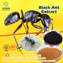 sex product for men black ant sex pills best selling product Black Ant Extract