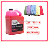 car detailing / car wash cleaner with customized logo