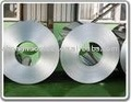 Hot dip galvanized coil steel sheets ppgi and hdgi