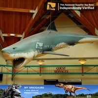 MY Dino-Animatronic shark model animatronic animals for sale