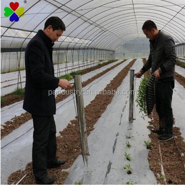 Greenhouese pepper melon peppers tomatoes vegetable seedling planter