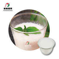 Slush Sorbet Lychee Flavor Powder for Cafe Shop
