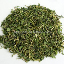 coriander export and import